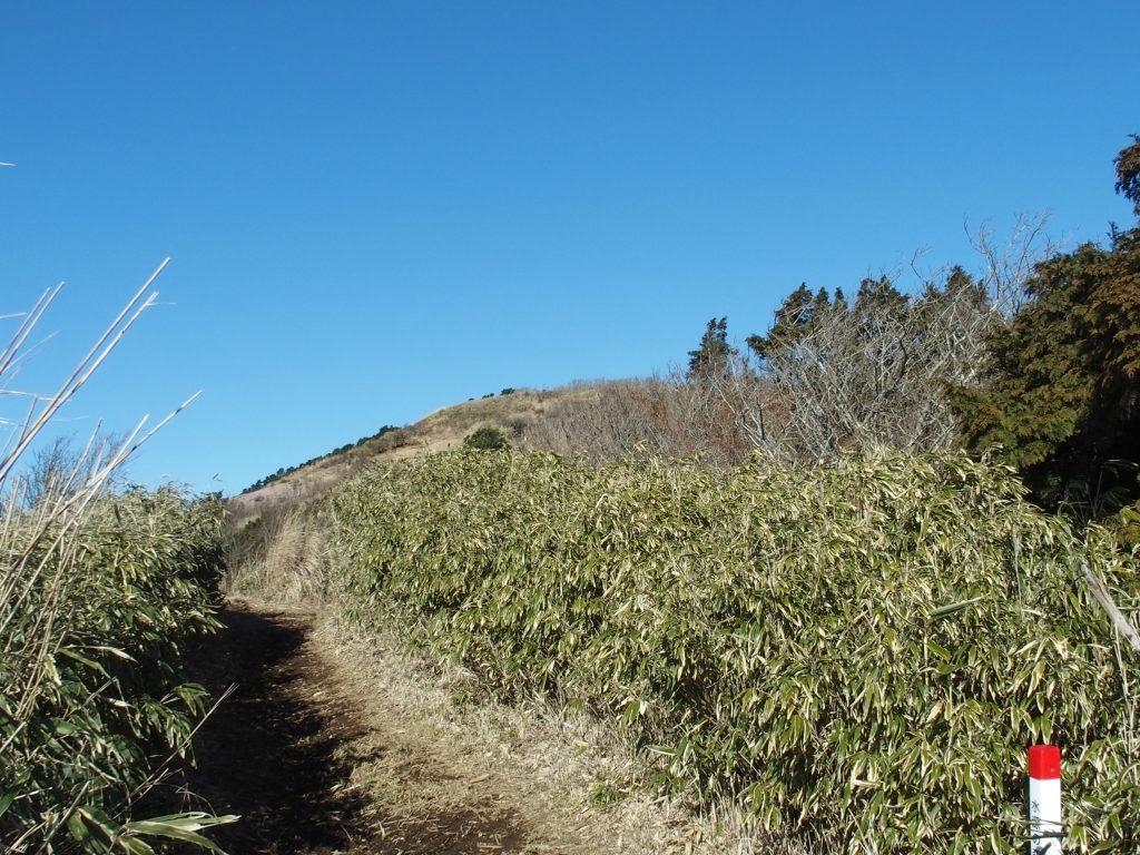 明神ヶ岳山頂が見えてきた