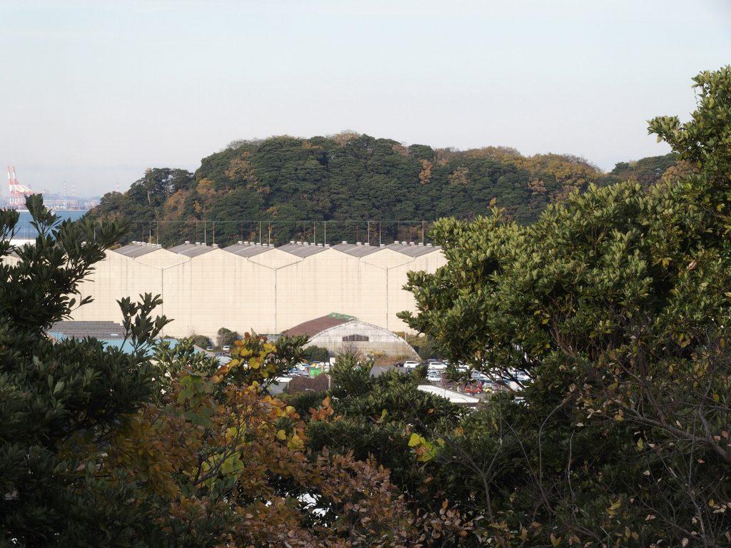 貝山緑地から全景を見渡せる