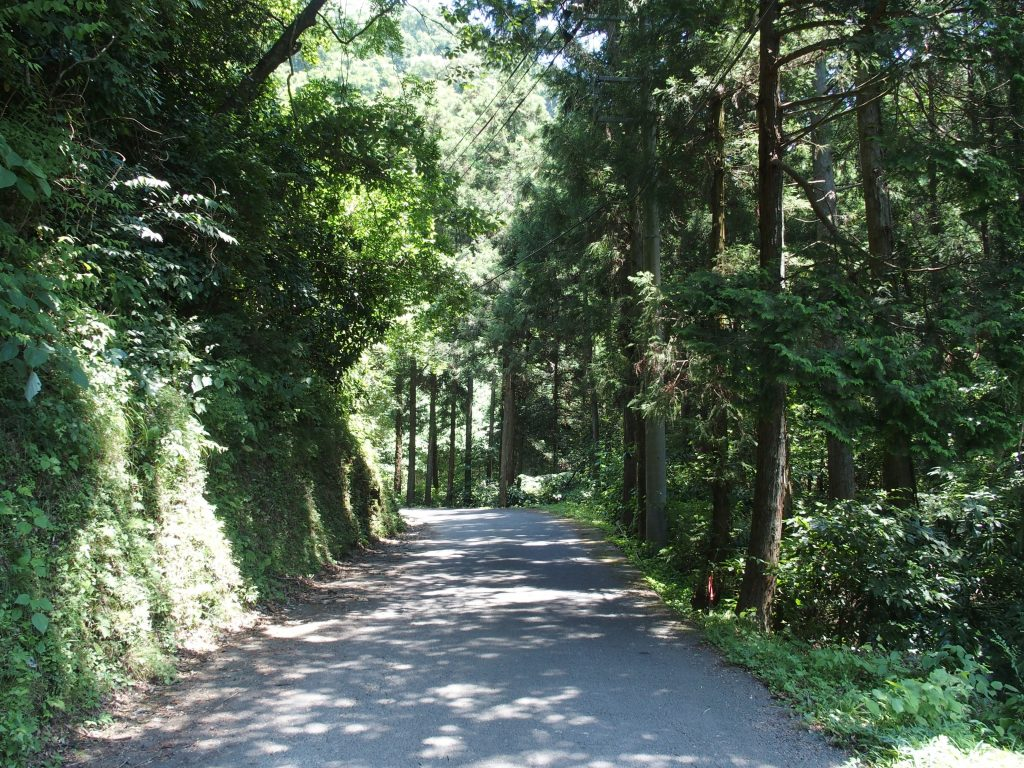 尺里峠への道路
