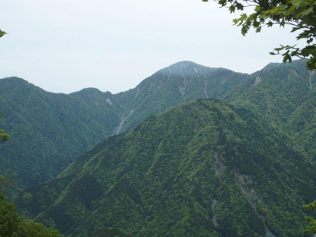 鍋割山近くからの蛭ヶ岳下の砂防ダムが連なって見える