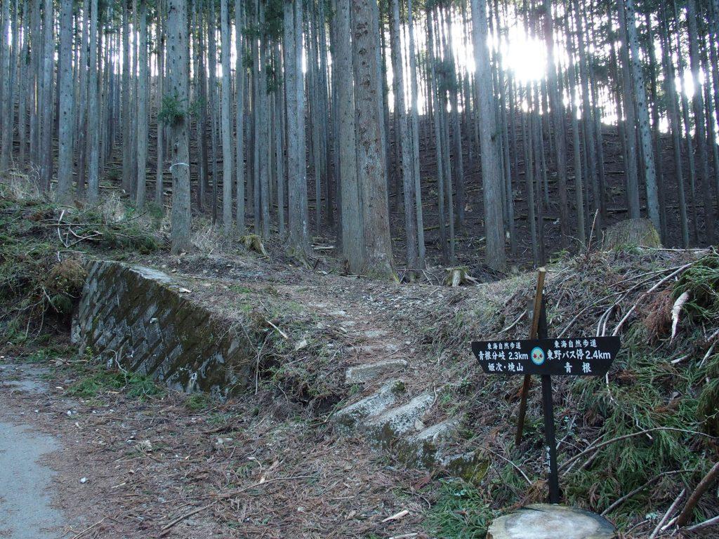 「八丁坂ノ頭」への分岐