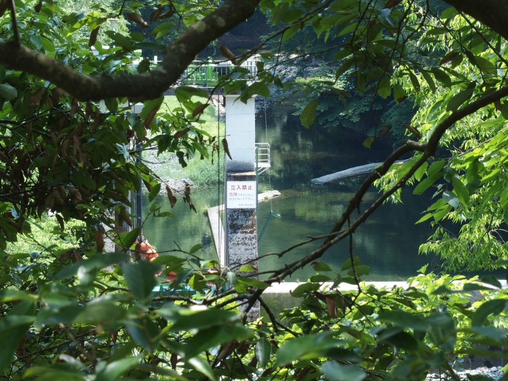 対岸からダム正面の眺め。