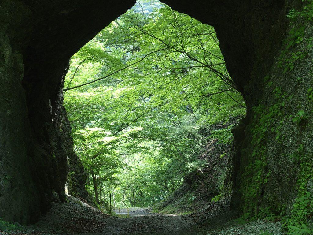 素掘りのトンネルを抜ける