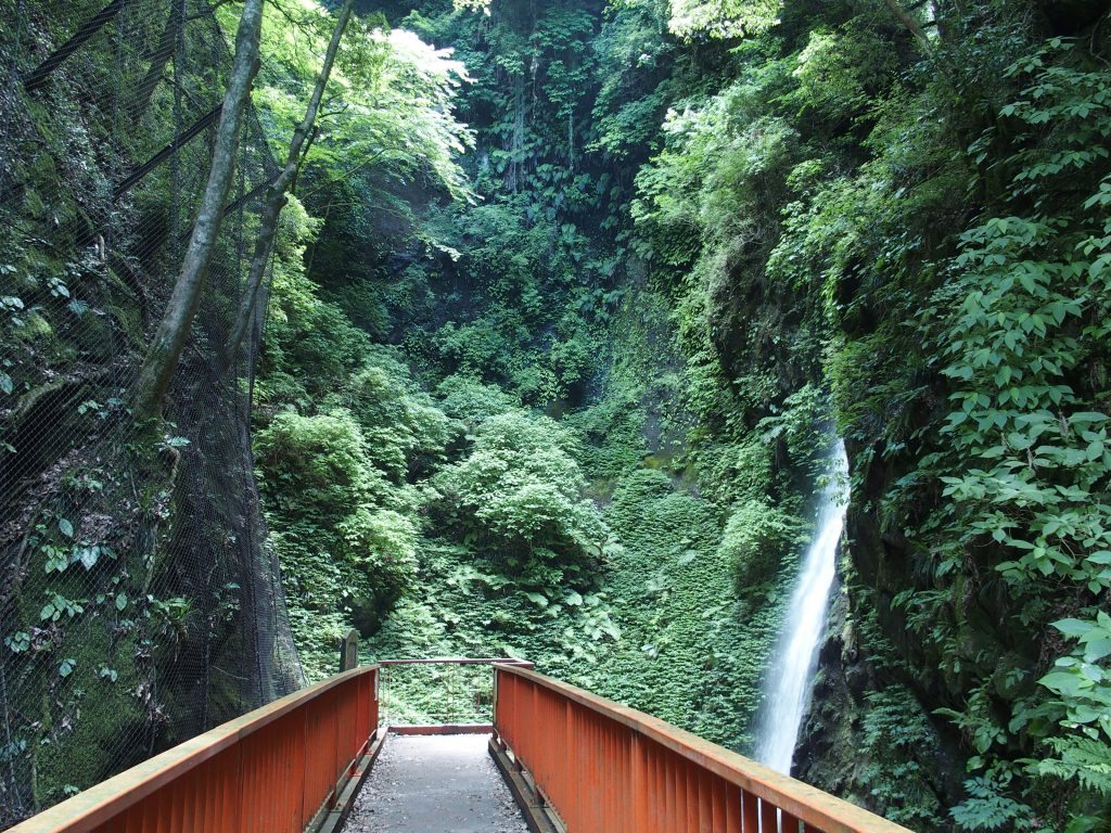 橋の上からも滝見物は可能