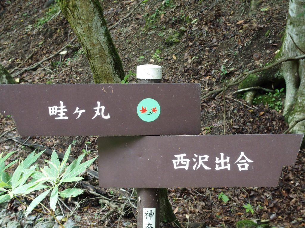 西沢出合・畦ヶ丸の指導標