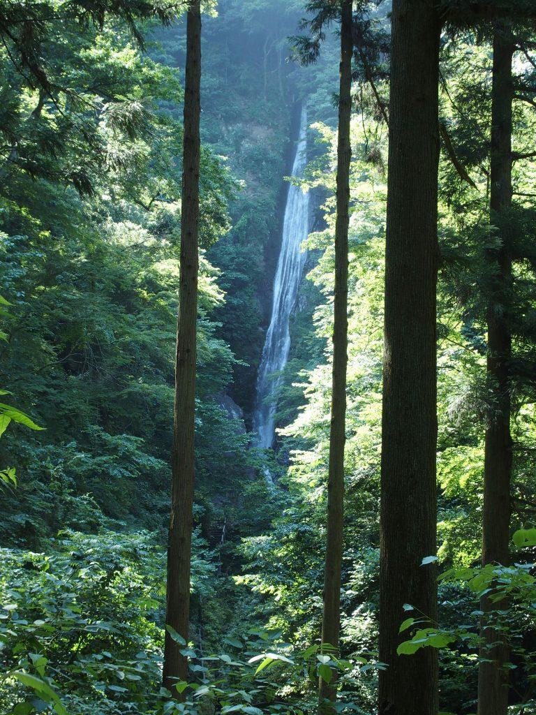 洒水の滝を遠望
