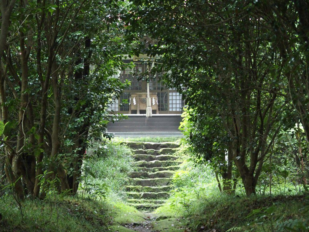 天照山神社の参道