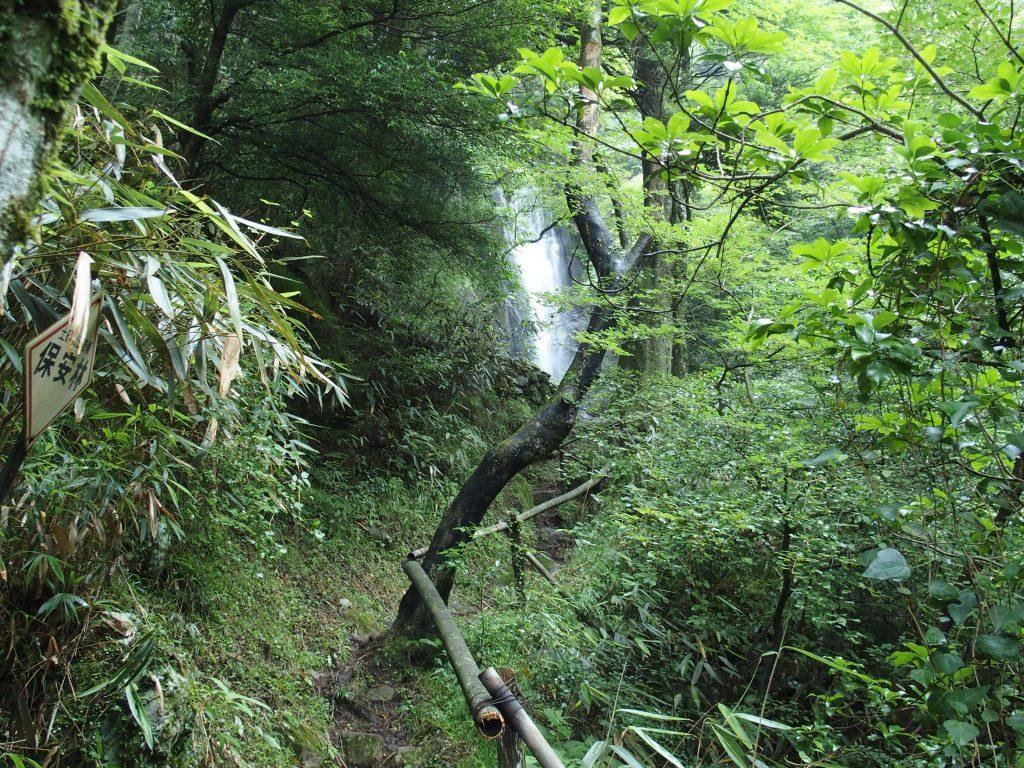 白雲の滝に接近