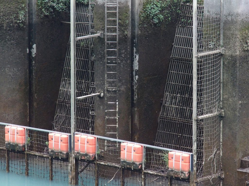 取入口にはゴミよけのフェンス、点検用のハシゴが設置されている