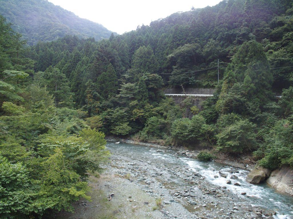 早戸川沿いの両側に林道