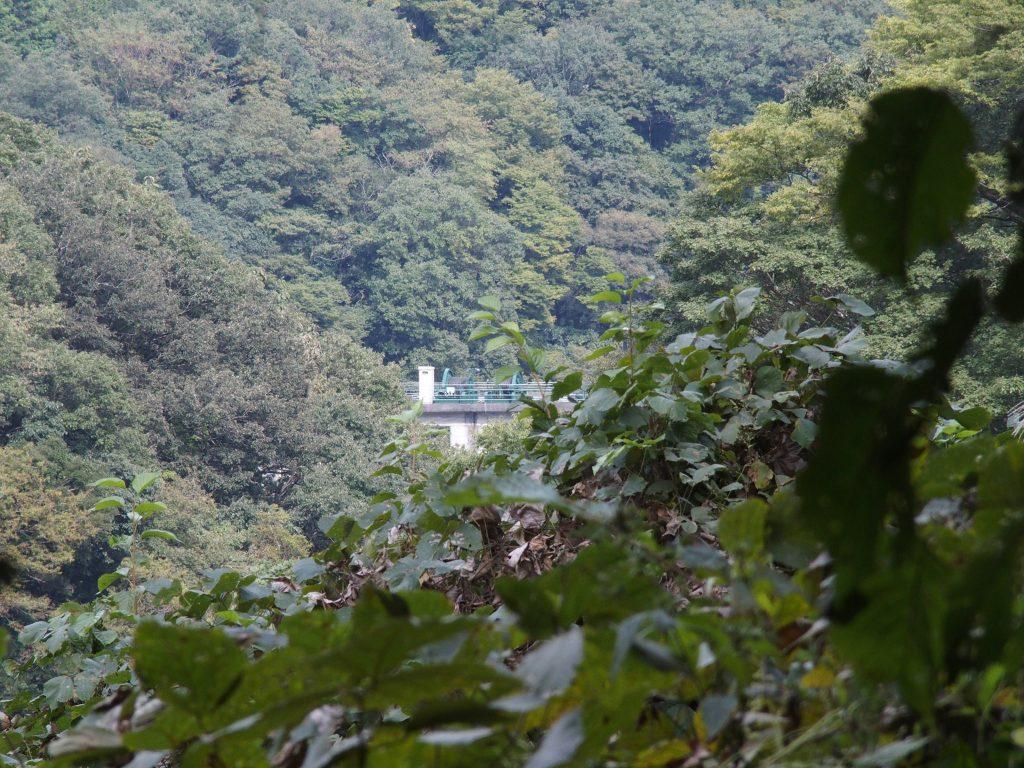 谷間に道志ダムの施設が見える