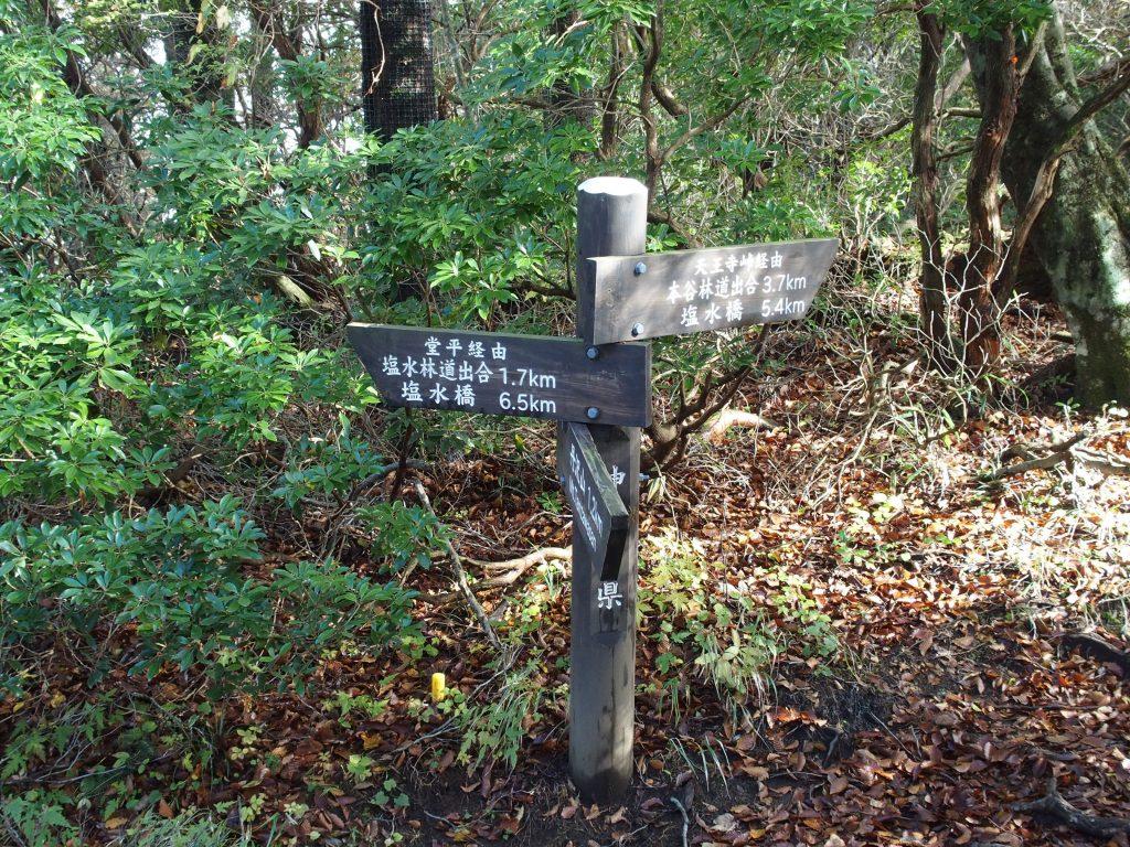 天王寺峠方面からの道との分岐点