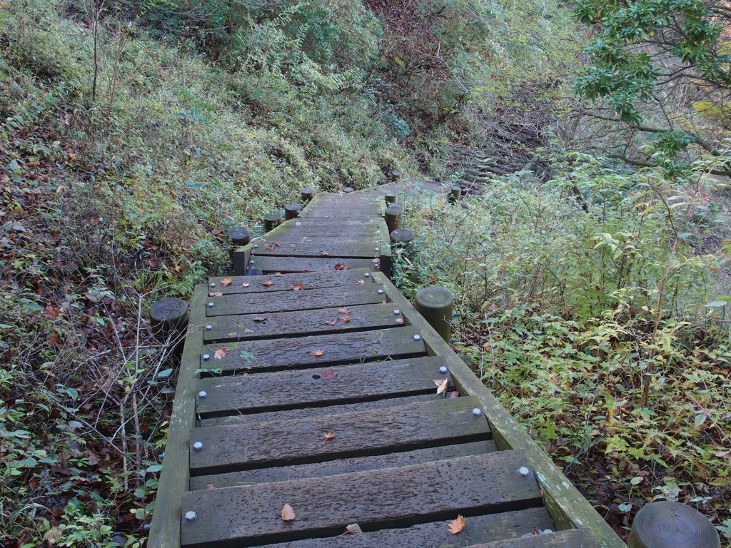 階段が整備されたところもある
