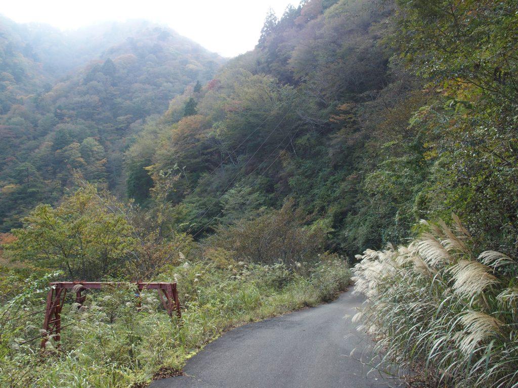 林道を下る。索道の起点がある。