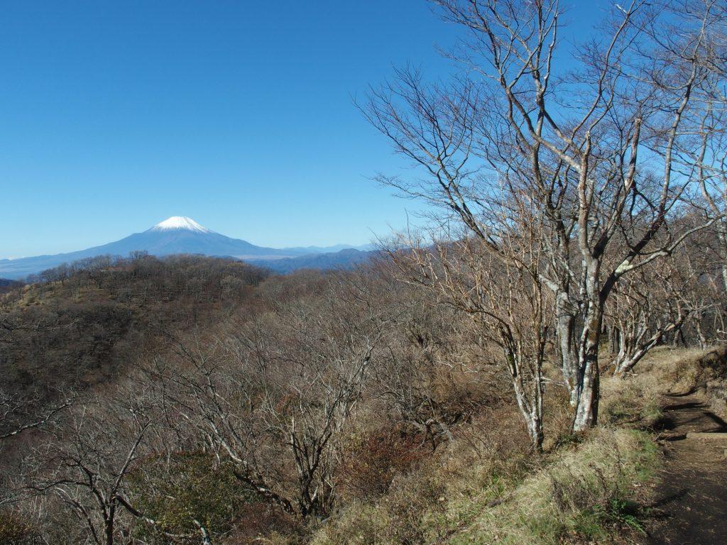 西丹沢の向こうに富士山