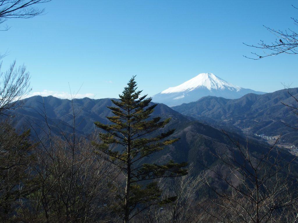 甲相国境尾根の向こうに富士山