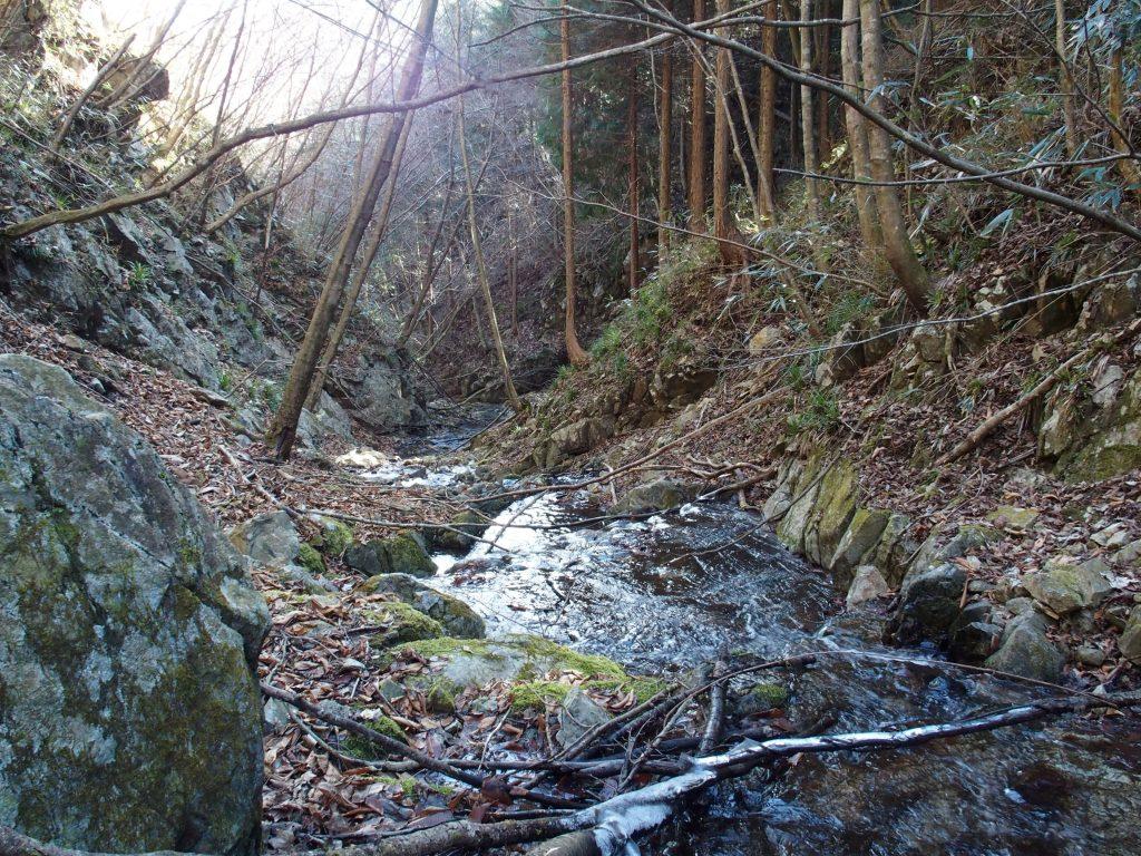 渓流を遡る