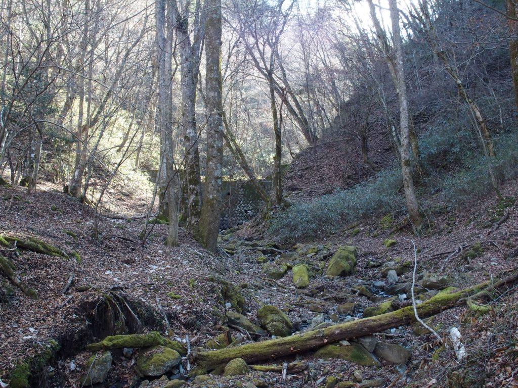 見学地の奥の堰堤
