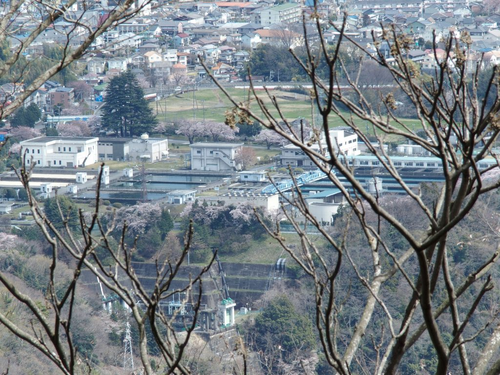城山から俯瞰
