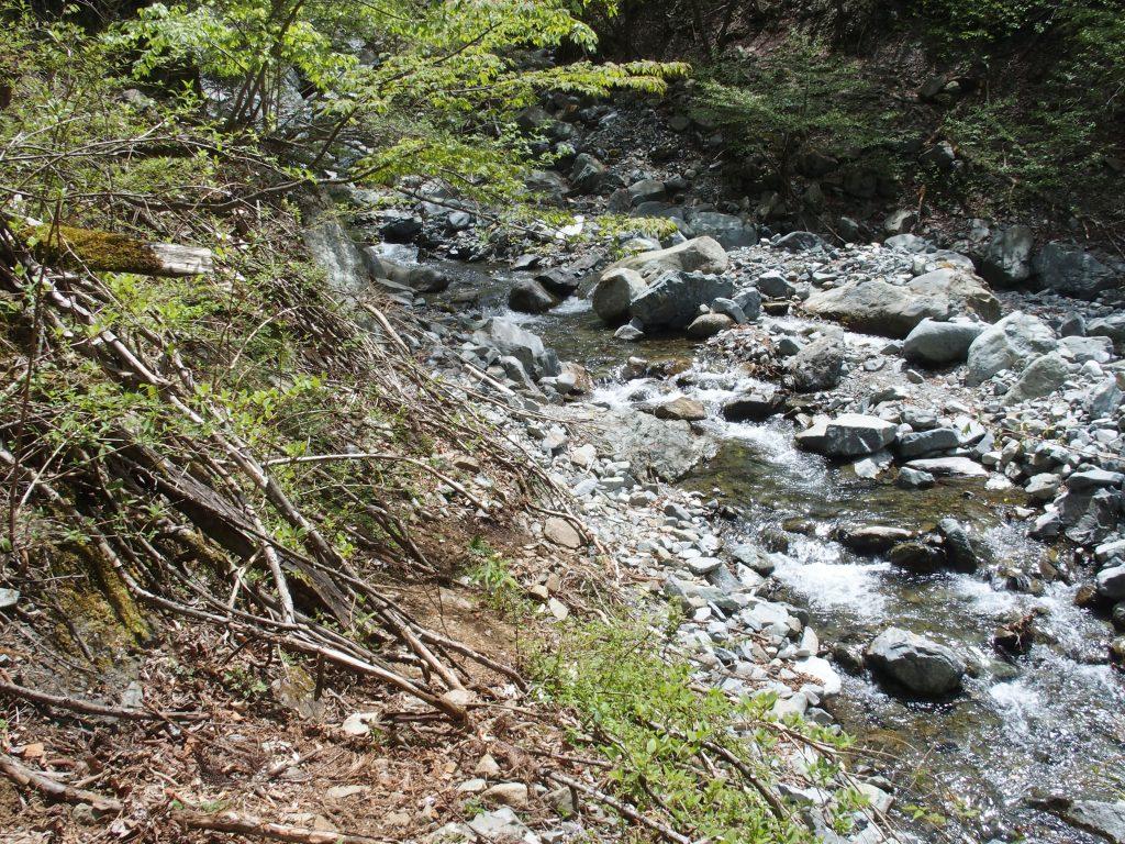 河原を進め