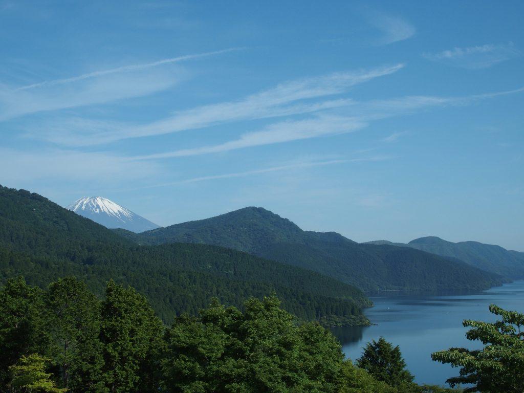 西岸の森の向こうに、富士山が顔を出す