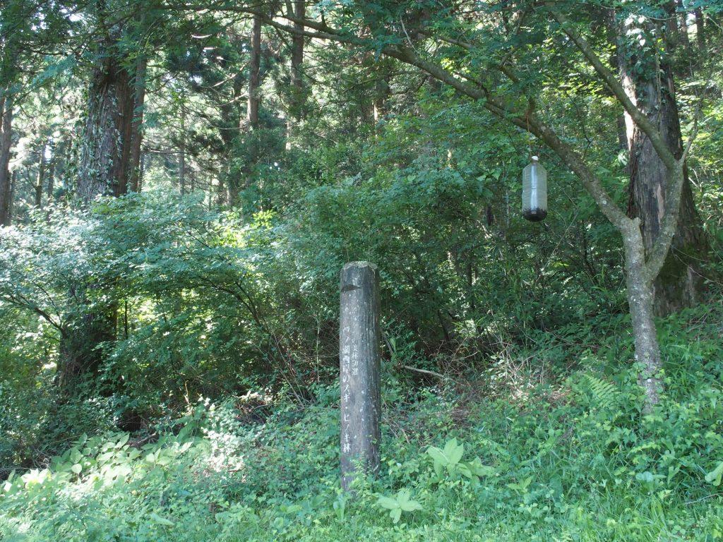 かながわの美林50選の標柱が建つ