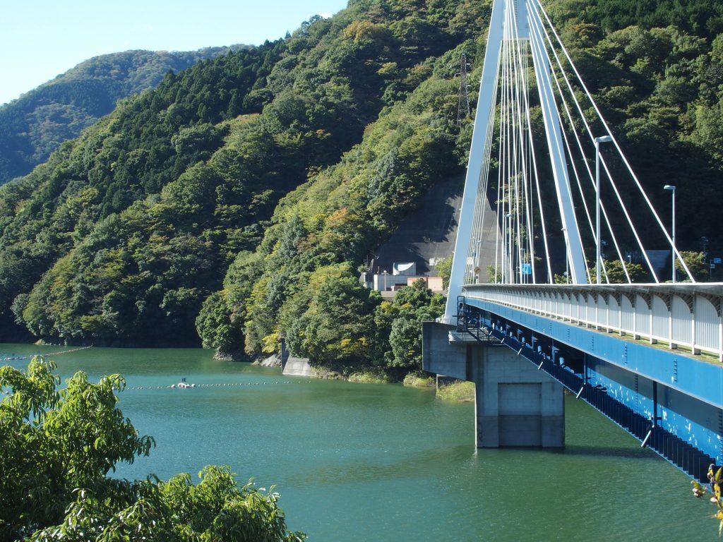 丹沢湖のランドマークの斜張橋