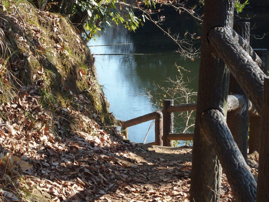 遊歩道で湖を一周できる