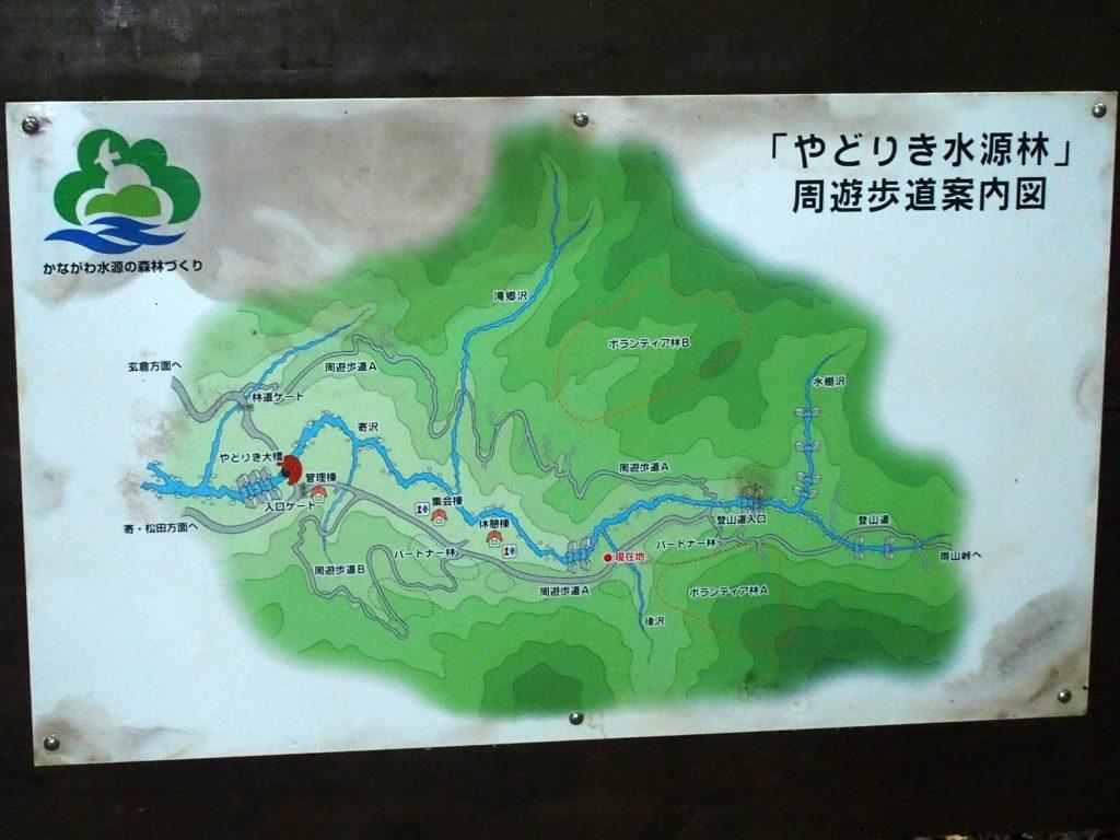 植林エリアを説明する看板も