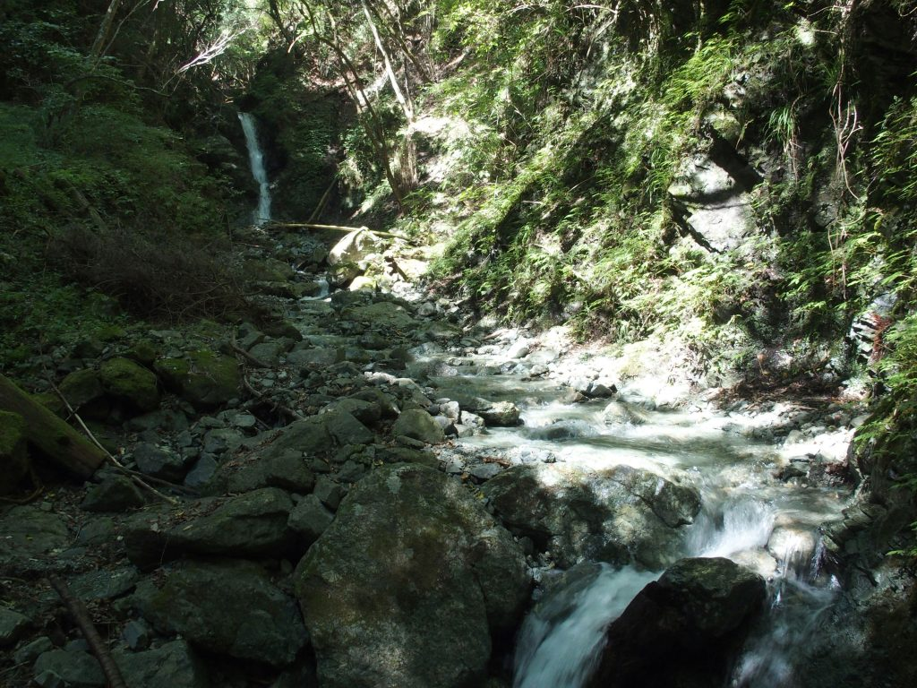 上流側の小滝も落差5mぐらいはある