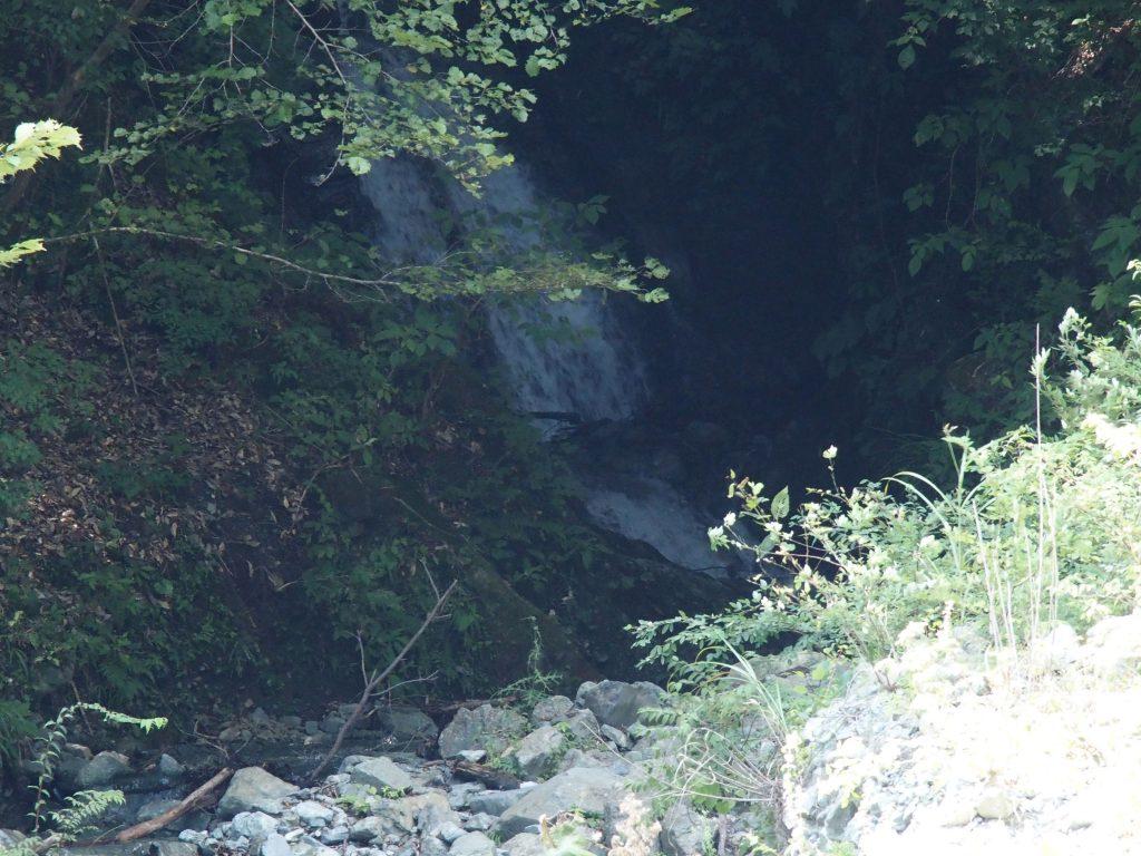 滝は林の中