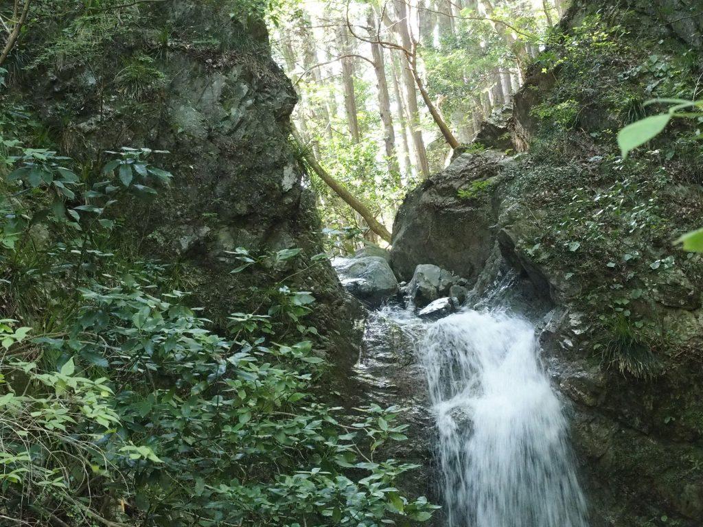 滝口から勢いよく落ちてくる