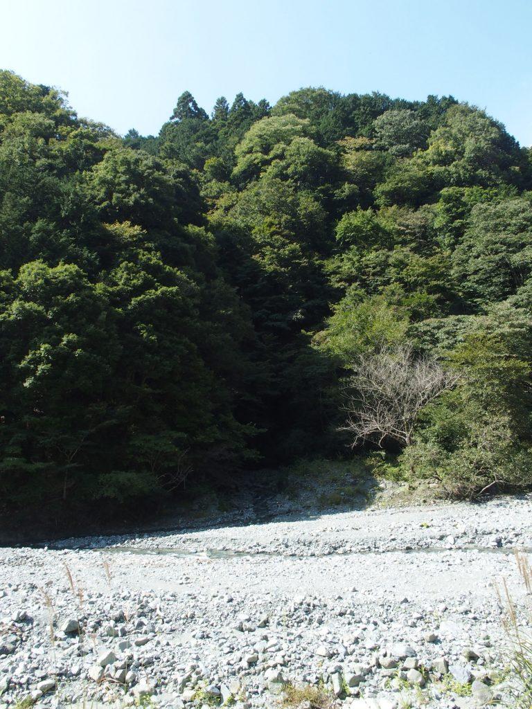 滝のあたりを対岸から