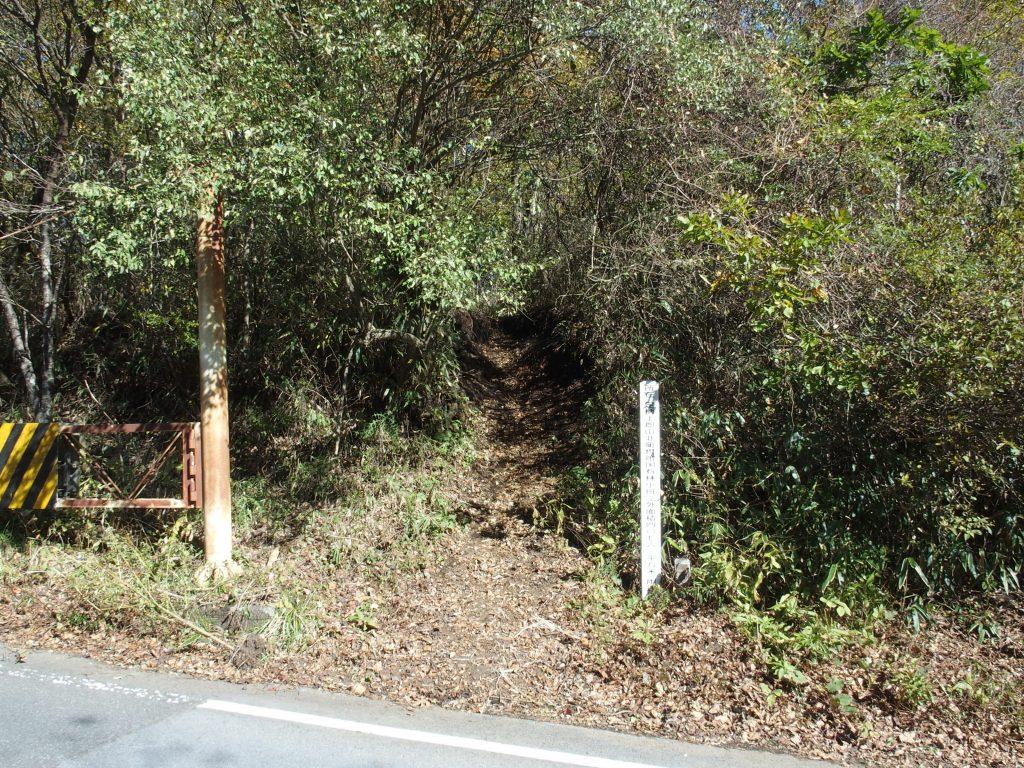 林班の標柱から踏み跡が続く