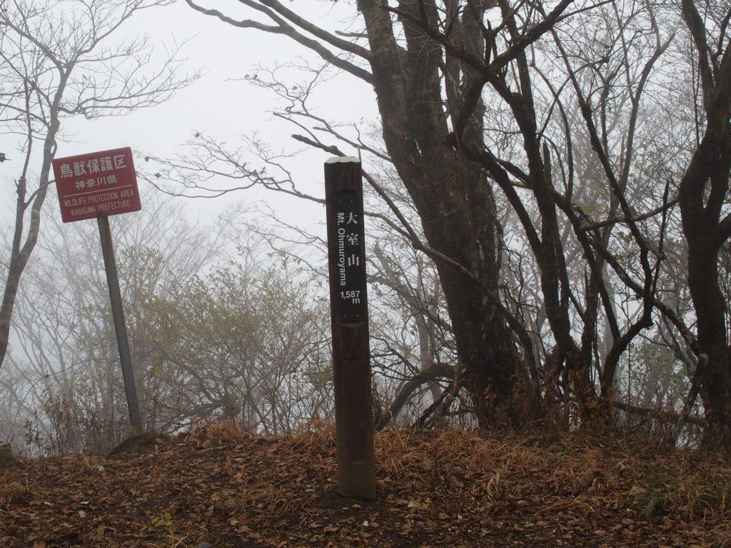 神奈川県の大室山山頂標柱