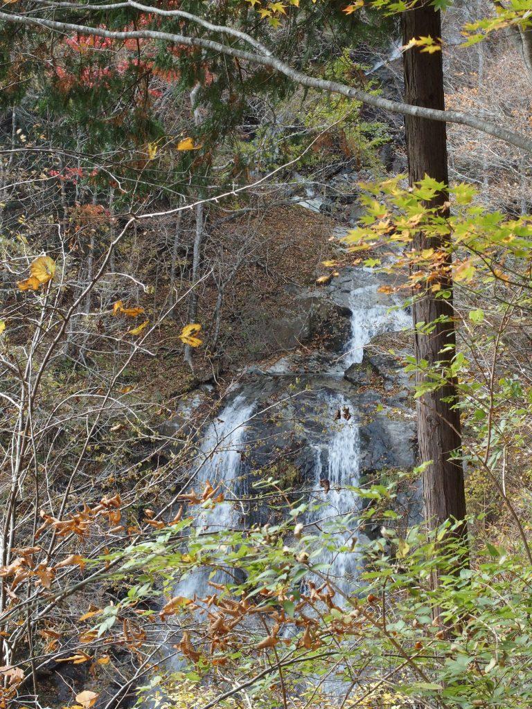 木々の間から2条の滝