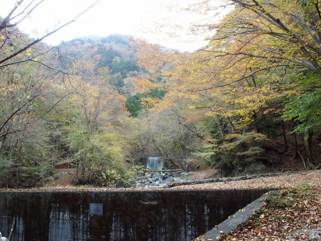 堰堤が連続する林道終点付近