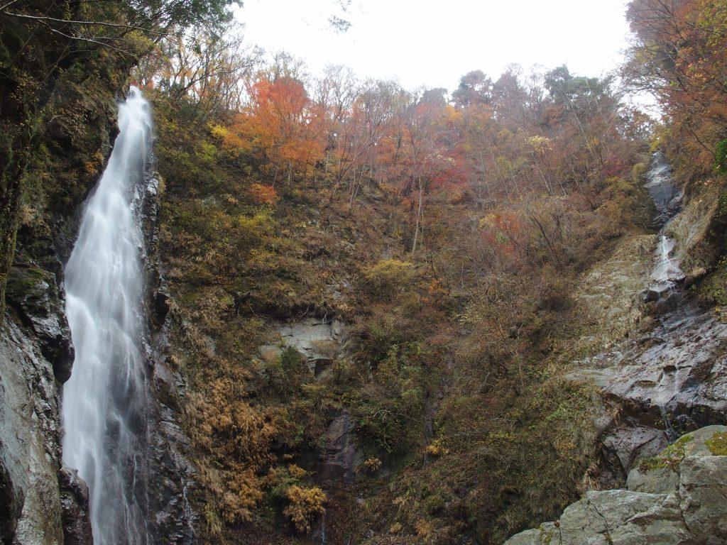 対面する滝と