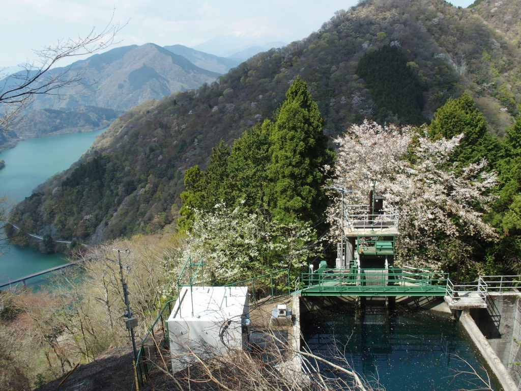 丹沢湖を俯瞰、富士山を遠望