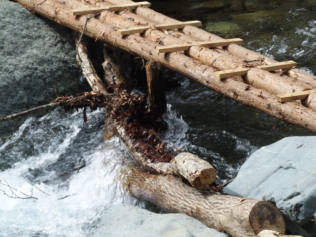 丸太橋はしっかりしたつくり