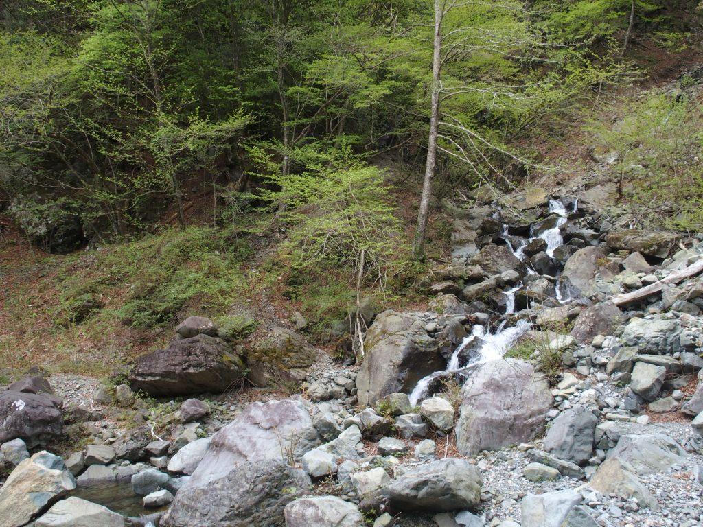 大滝が流れ込んでいるにしては細い支流ではあるけれど