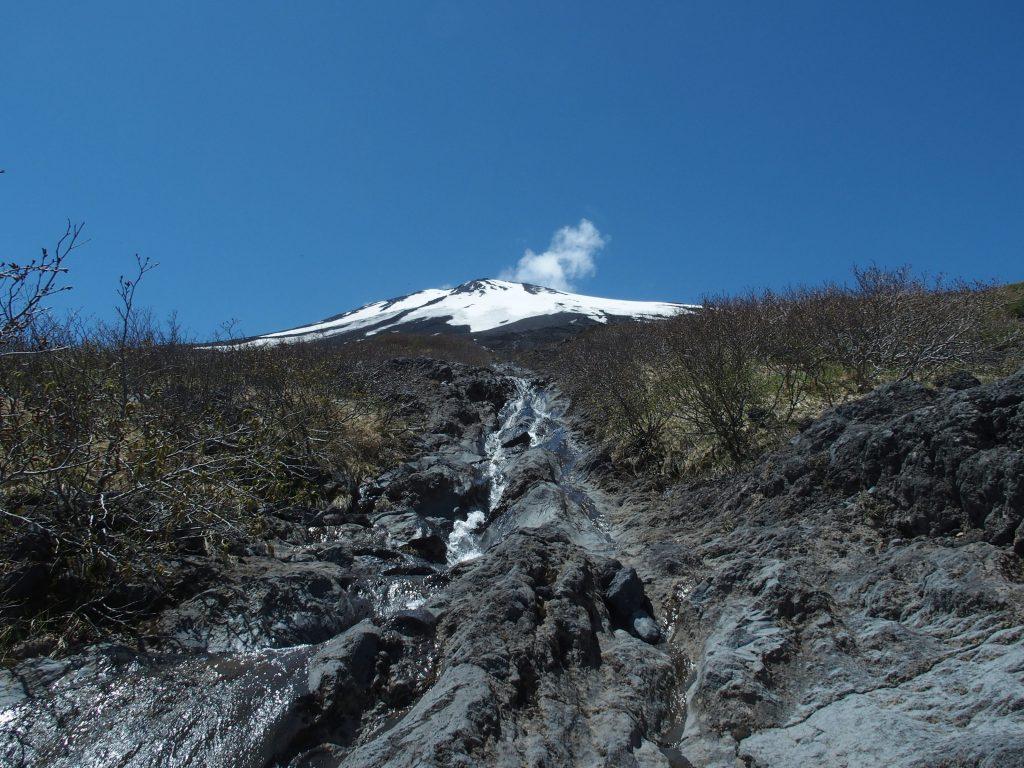 富士山さえ見えていれば、それなりには絵になる