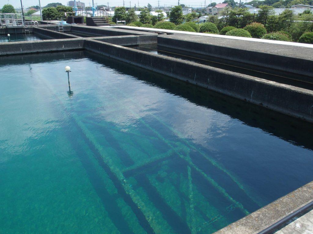 青い水の景色が浄水場の魅力