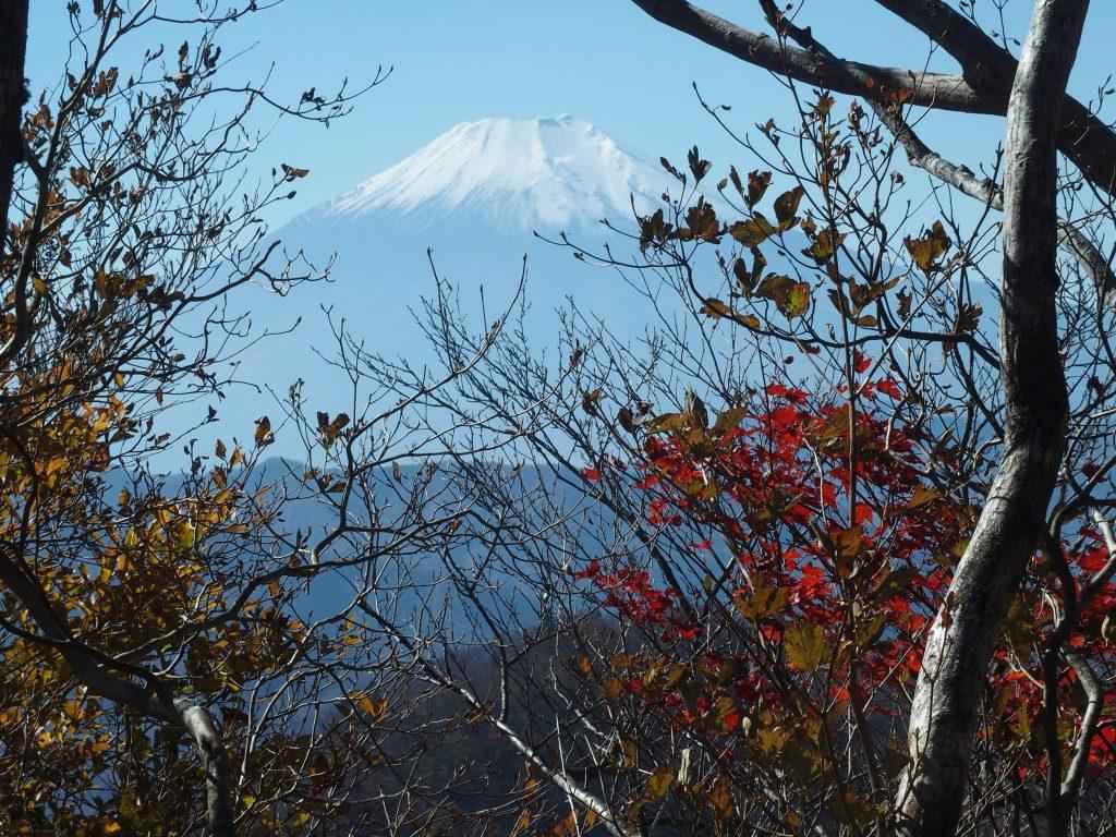 ずっと富士山が見え隠れ