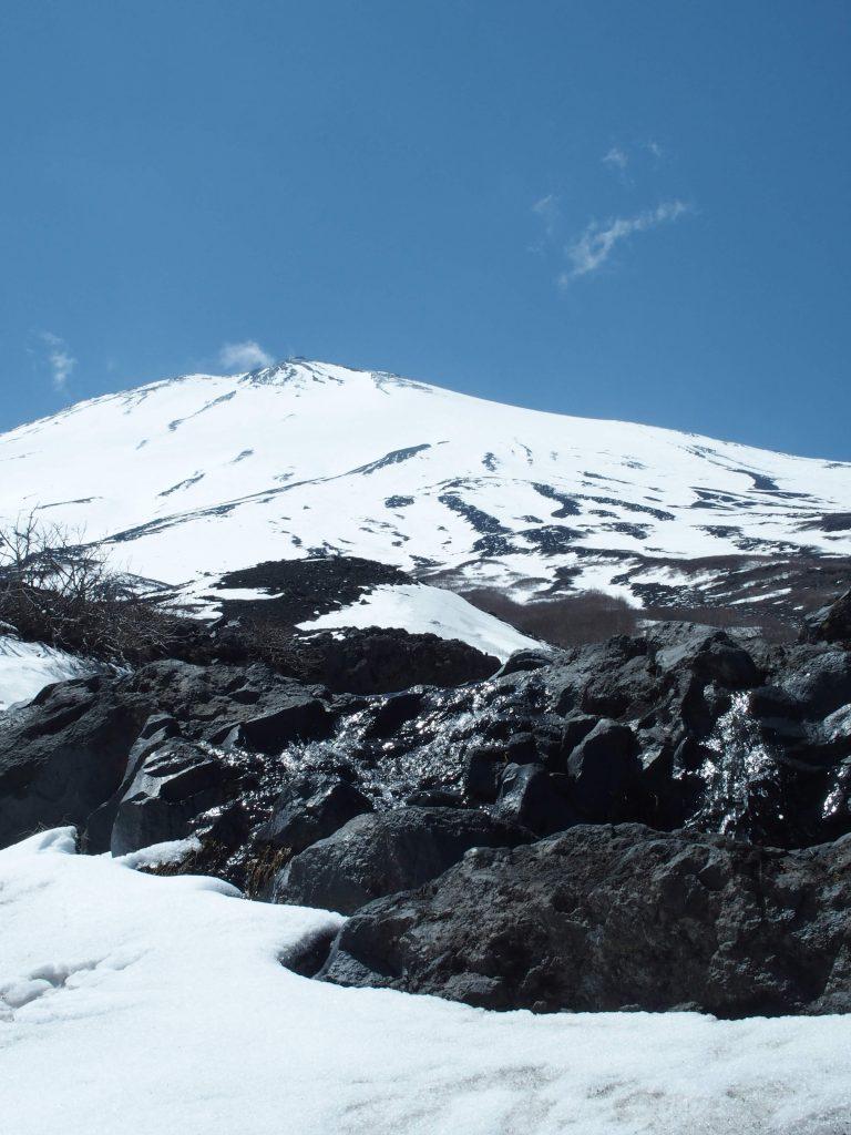 まぎれもなく富士山の水