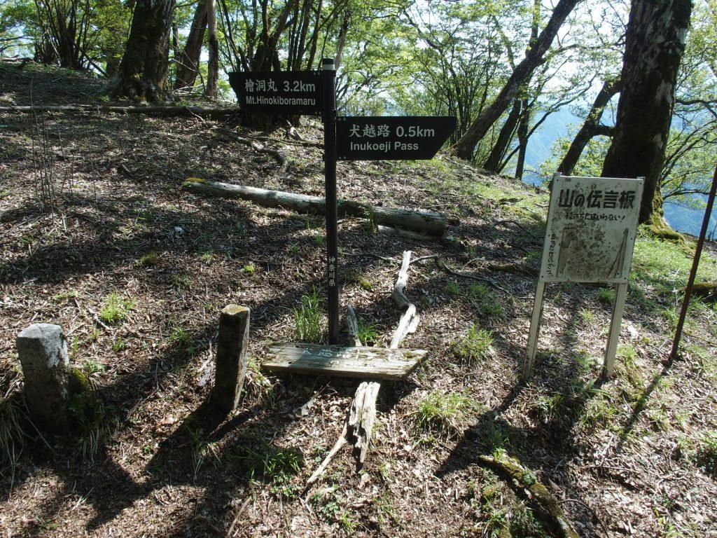 犬越路まで0.5kmのポイント
