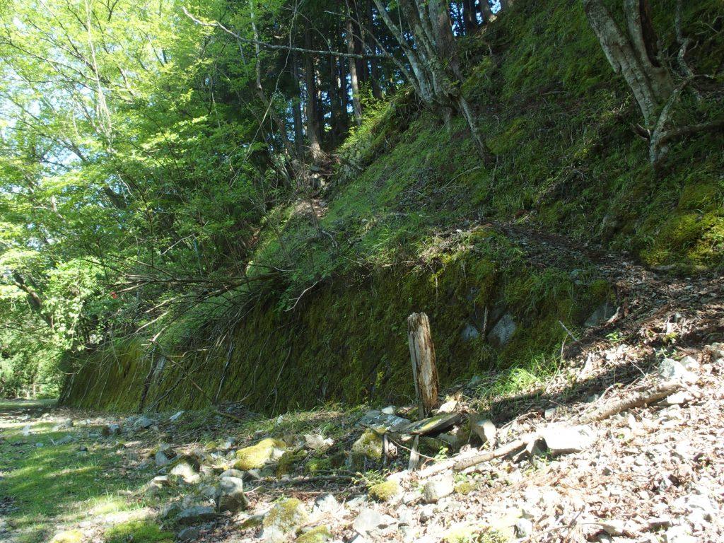 林道と合流